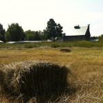 Champ vue sur la grange