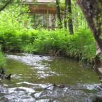 La Généreuse - Un gazebo près du ruisseau situé sur le sentier