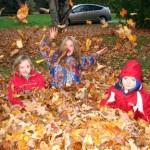 La Généreuse - Activité d'automne